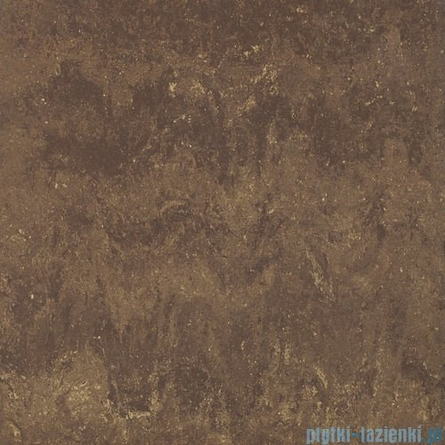 Paradyż Mistral brown poler płytka podłogowa 59,8x59,8