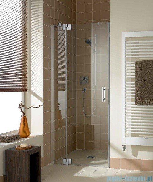 Kermi Filia Xp Drzwi wahadłowe z polem stałym, lewe, szkło przezroczyste KermiClean, profile srebrne 120x200cm FX1TL12020VPK