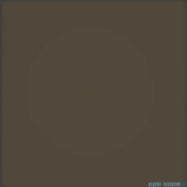 Tubądzin Pastel brązowy mat płytka ścienna 20x20
