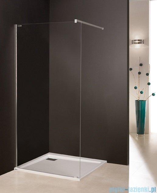 Sanplast kabina prysznicowa narożna typu Walk In  P/FREE-100 przejrzyste 600-260-0440-42-401