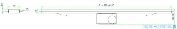 Green Line odpływ liniowy 60 cm ruszt smile + syfon GL600SM