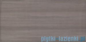 Płytka ścienna Tubądzin Ashen 1 29,8x59,8