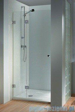 Riho Scandic Lift M104 drzwi prysznicowe 120x200 cm LEWE GX0070301