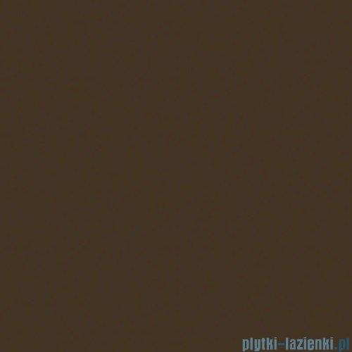 Paradyż Inwesta brązowa matowa płytka ścienna 19,8x19,8