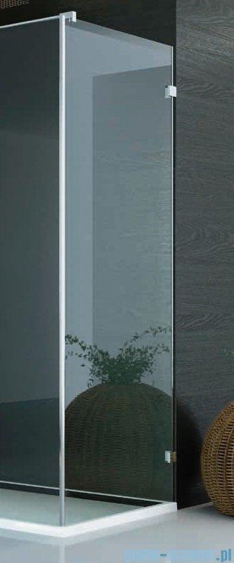 SanSwiss PUR PU31 Ścianka boczna wymiary specjalne 30-100/do 200cm efekt lustrzany PURDT3SM21053