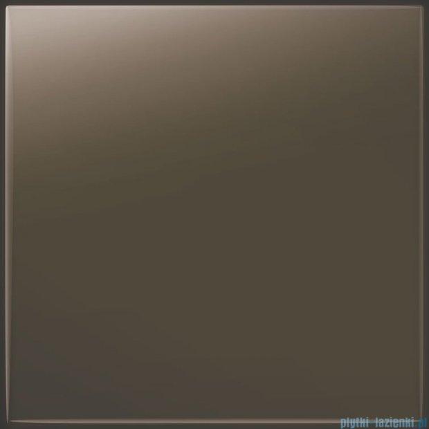 Tubądzin Pastel brązowy połysk płytka ścienna 20x20