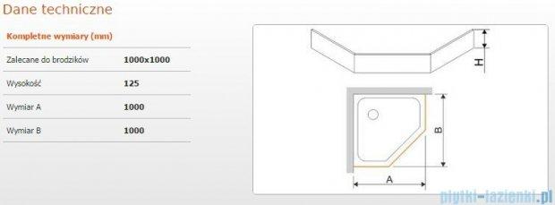 Sanplast Obudowa brodzika OBPK 100x100x12,5 cm 625-401-0840-01-000