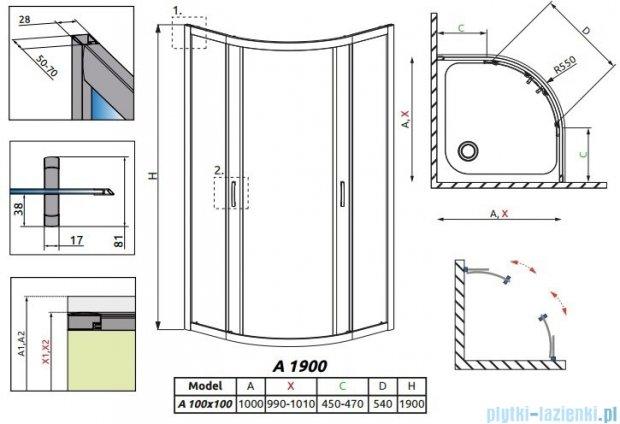 Radaway Premium Plus A Kabina półokrągła 100x100x190cm szkło brązowe 30423-01-08N