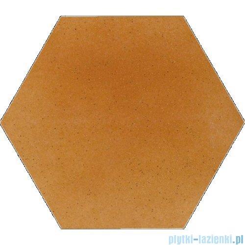 Paradyż Aquarius beige klinkier heksagon 26x26