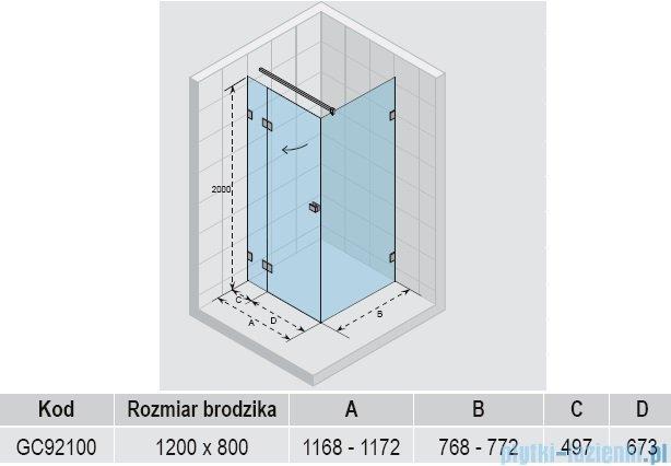 Riho Scandic S203 kabina prysznicowa 120x80x200cm GC92100