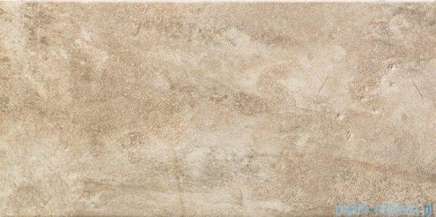 Tubądzin Lavish brown płytka ścienna 22,3x44,8