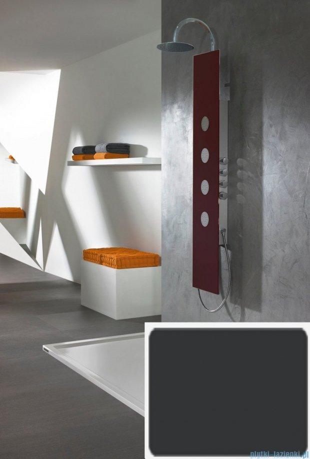 Sanplast Space Line panel prysznicowy PPo/SPACE-150 31x150 cm czarny 631-100-0130-43-000