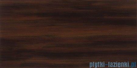 Domino Aceria brąz płytka ścienna 22,3x44,8
