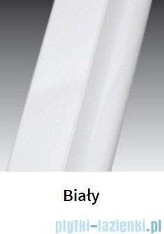 Novellini Drzwi do wnęki z elementem stałym GIADA G+F 114 cm prawe szkło przejrzyste profil biały GIADNGF114D-1A