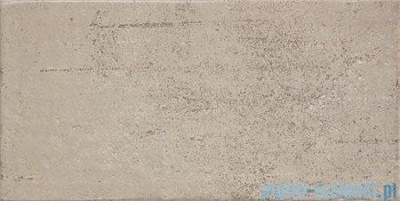 Domino Bihara szara płytka ścienna 22,3x44,8