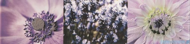 Tubądzin Maxima violet 2 listwa ścienna 10x44,8