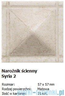Domino Struktura NS-Syria 2 5,7x5,7