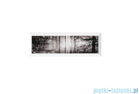 Pilch Simple 2 dekor 15x45