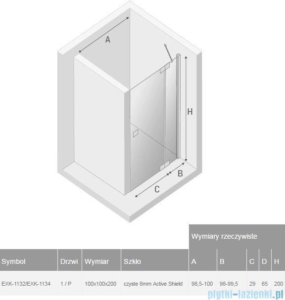 New Trendy Kamea kabina 100x100x200cm prawa przejrzyste EXK-1132/EXK-1134