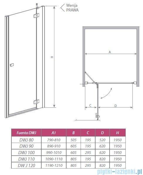 Radaway Drzwi wnękowe Fuenta DWJ 120 prawe szkło intimato 381016-12NR