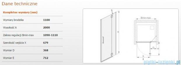 Sanplast drzwi skrzydłowe DJ2L(P)/AVIV-110 110x200 cm prawa przejrzyste 600-084-0690-42-401