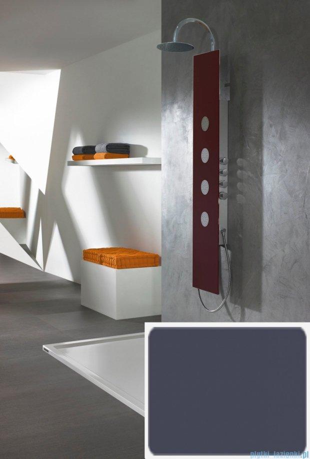 Sanplast Space Line panel prysznicowy PPo/SPACE-150 31x150 cm szary 631-100-0130-51-000