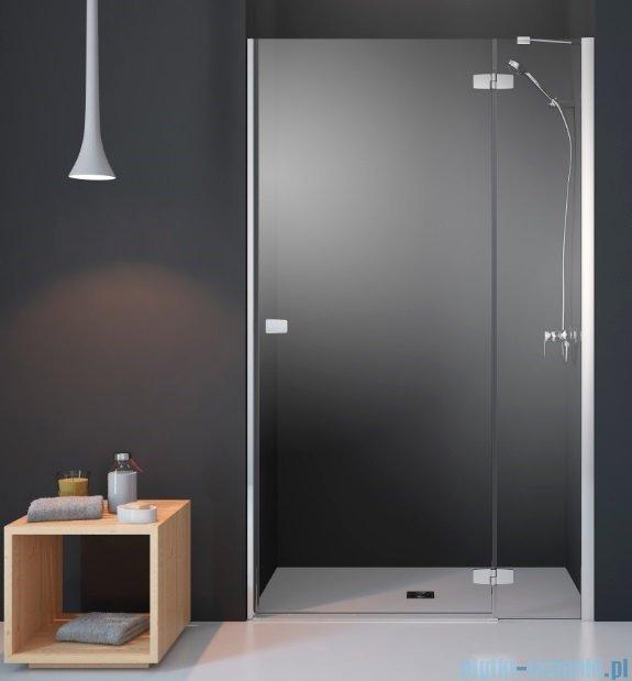 Radaway Fuenta New Dwj drzwi wnękowe 120cm prawe szkło przejrzyste 384016-01-01R