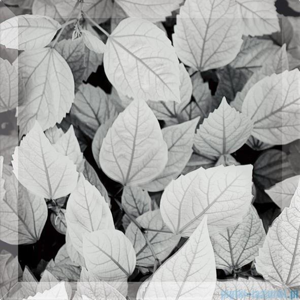 My Way liście uniwersalne inserto szklane 25x25
