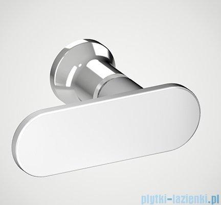 New Trendy New Soleo Plus drzwi wnękowe z wspornikiem krzyżakowym 110x195 cm przejrzyste D-0140A/D-0094B-WP