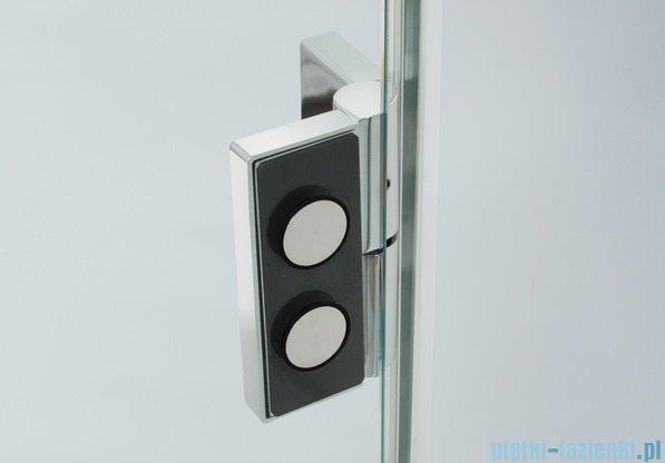 Sanplast drzwi skrzydłowe DJ2L(P)/AVIV-100 100x200 cm prawa przejrzyste 600-084-0670-42-401