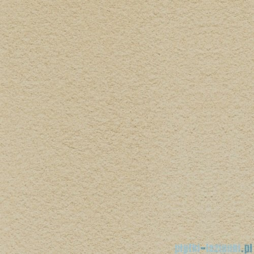 Paradyż Arkesia beige struktura płytka podłogowa 59,8x59,8