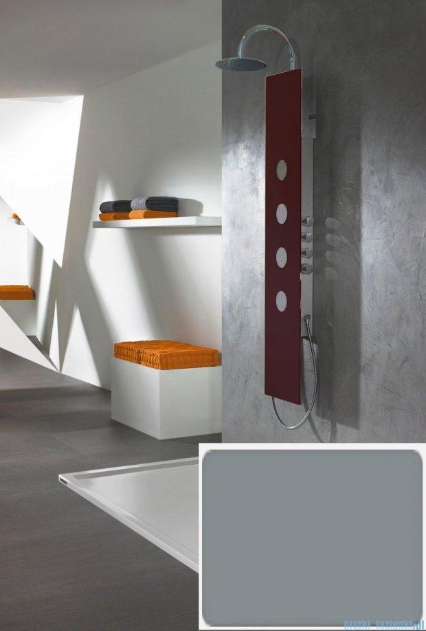 Sanplast Space Line panel prysznicowy PPo/SPACE-150 31x150 cm srebrny 631-100-0130-37-000