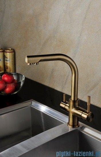 Blue Water Alabama bateria kuchenna z podłączeniem do filtrów wody stare złoto 5901730610031