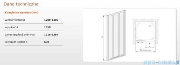 Sanplast drzwi przesuwne  DTr-c-120-130 szkło Sitodruk W4 600-013-1861-01-410