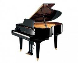 Yamaha DGC2ENPE fortepian z system Disclavier