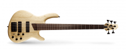 Cort B5 Plus AS OPN Gitara basowa