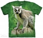 Ring Tailed Lemur - The Mountain