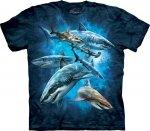 Shark Collage - Koszulka The Mountain