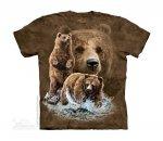 Find 10 Brown Bears The Mountain - Dziecięca