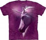 Divine Unicorn - The Mountain