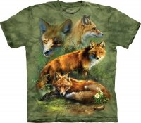 Red Fox Collage - The Mountain