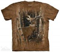 Birchwood Buck- The Mountain