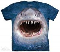 Wicked Nasty Shark - The Mountain