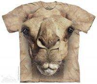Big Face Camel - The Mountain