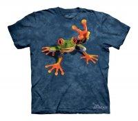 Victory Frog - Dziecięca - The Mountain