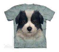 Border Collie Puppy - The Mountain - Dziecięca