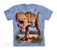 Striped Rex - The Mountain Dziecięca