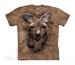 Baby Kangaroo - Kangur - The Mountain - Dziecięca