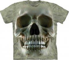 Big Face Skull - The Mountain