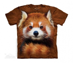 Red Panda Portrait -Junior The Mountain